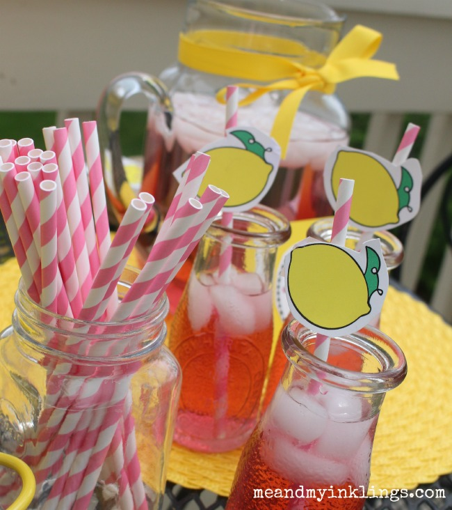 Lemonade_Stand_Straws