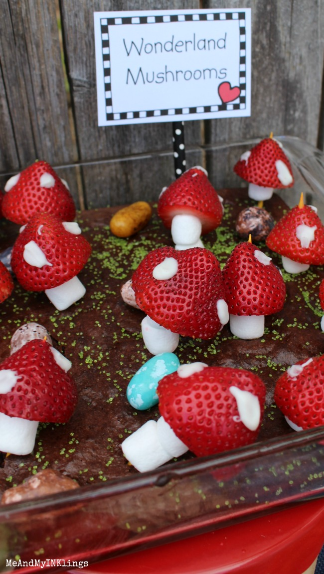 Wonderland Mushrooms