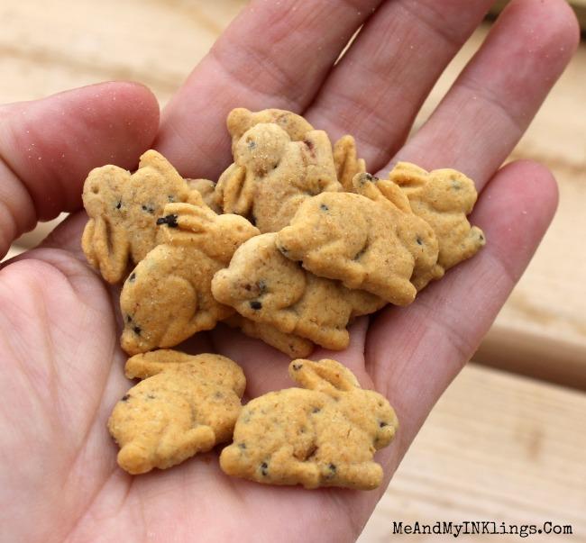Annies Chocolate Chip Cookie Bunnies