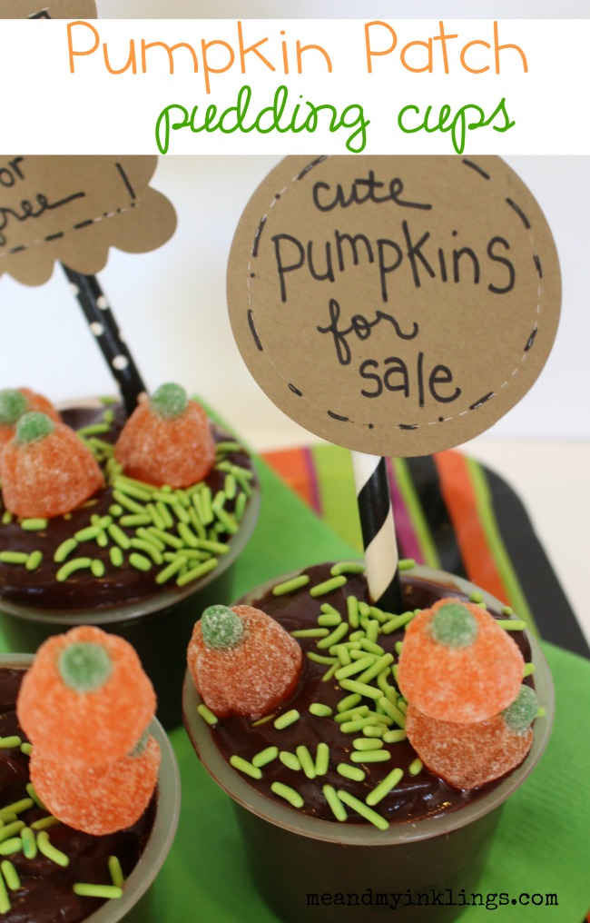 Pumpkin Patch Pudding Cups