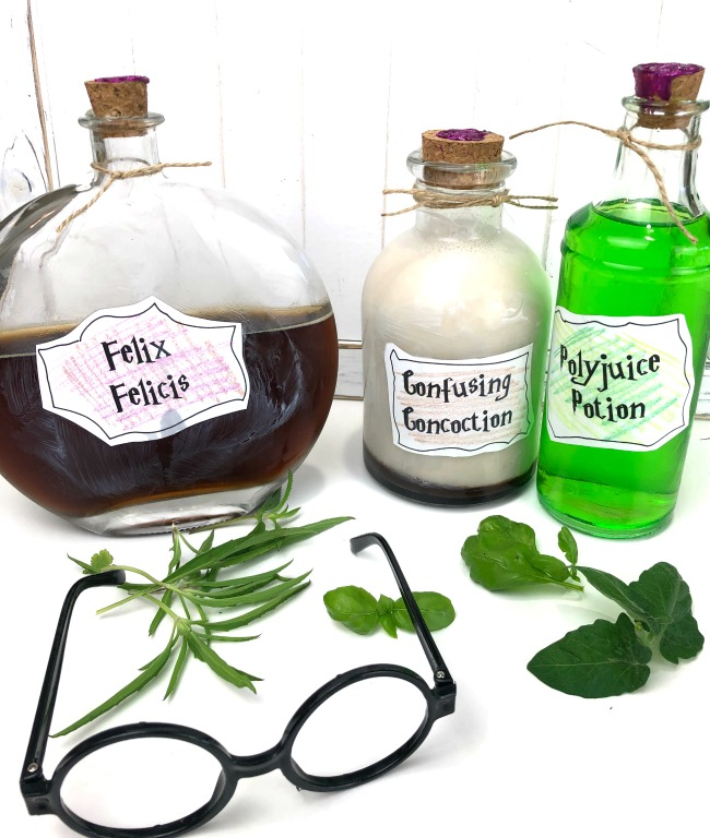 DIY Harry Potter Potion Jars with Free Printable