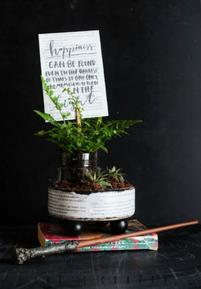 Harry Potter Planter